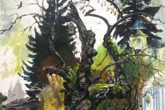 16-Saxana-Grüne-Lunge