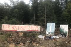 102-2.-Tag-20-August-reinhardswald
