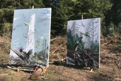 114-Reinhardswald-2-Beide-fertig-22.-August-2019
