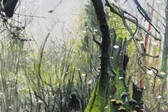 H.-Baumportrait-im-Reinhardswald-160-x-120-cm-Öl-a.Lw_.-plein-air-2019